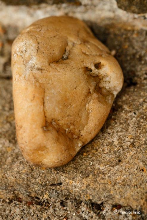 Gesprek met een steen