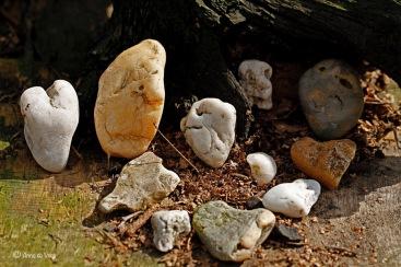 Stenenvolk bijeen